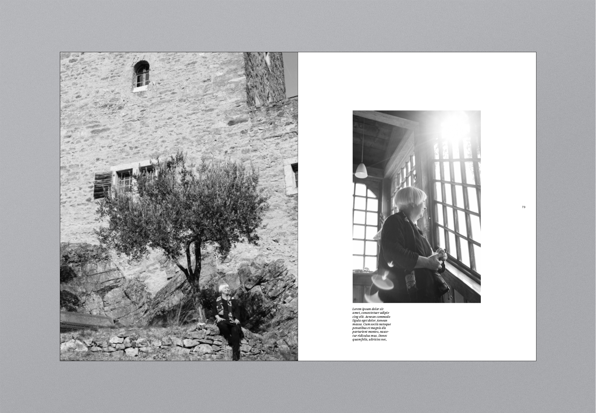 Castello Bildband Fenster