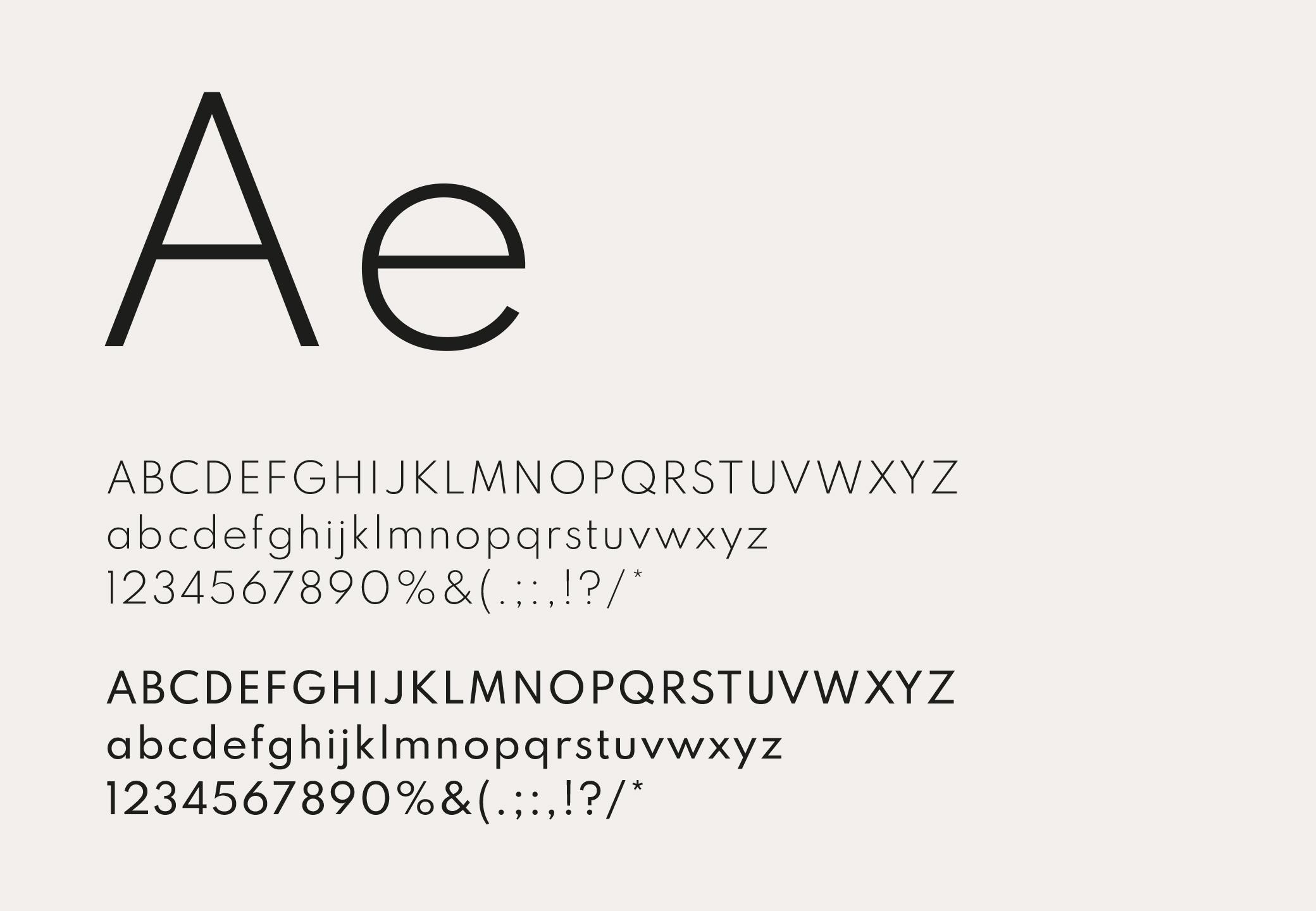 case_fuerdisdihei_typografie